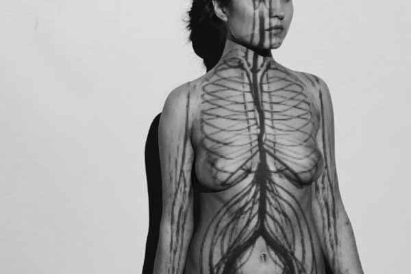 "Reperformance ""Circulatory system"" by Ana Mendieta"